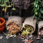 Troubles digestifs : Essayez la phytothérapie